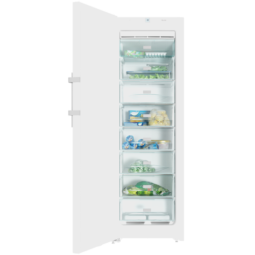 FN 28262 WS Freestanding Freezer product photo Back View L